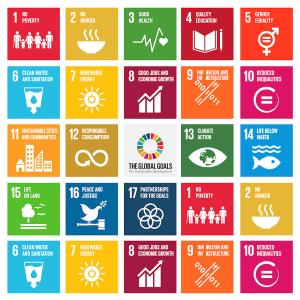 Cele 17 obiective ONU pentru dezvoltarea sustenabilă. Susţine-le şi tu!