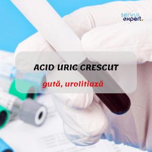 acid uric crescut