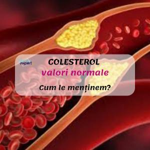 Valori normale COLESTEROL. Cum le menținem?