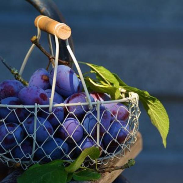 Antocianine: beneficii și surse alimentare; prune