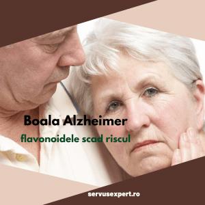 Boala ALZHEIMER: flavonoide care scad riscul