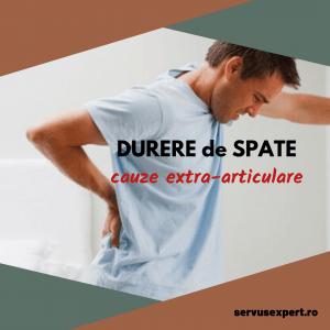 DURERE de SPATE: cauze extraarticulare