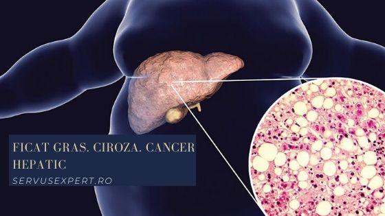 ficat gras: ce semne dă, cauze, analize, tratament