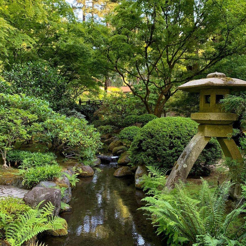 amenajare gradina: gradina japoneza