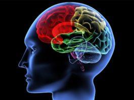 abilitati cognitive