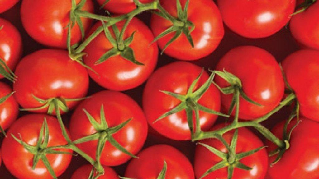 legume: roșii